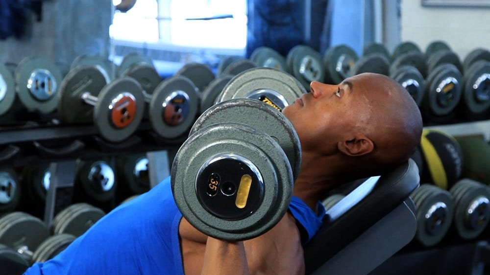 weight bench workout