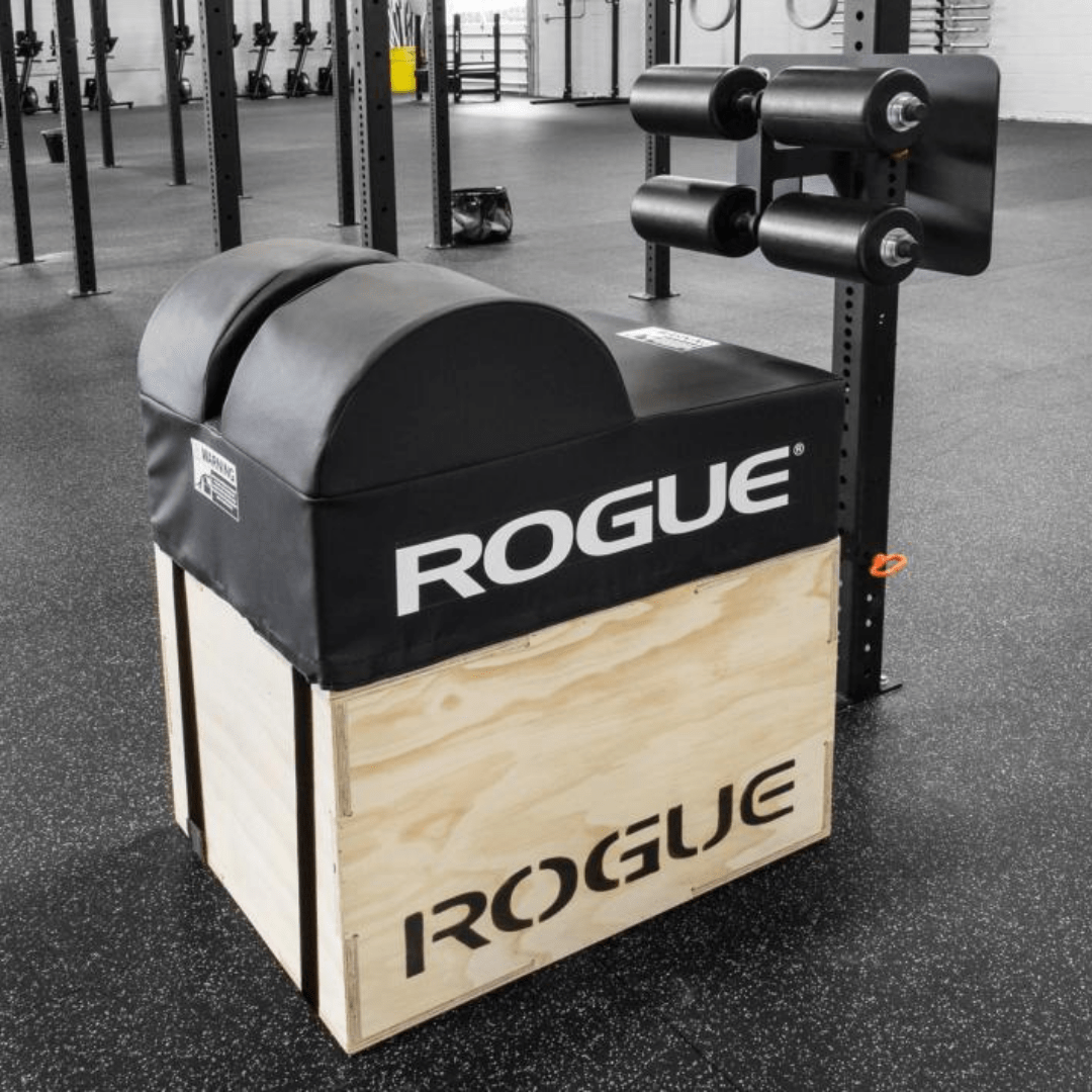Rogue fitness glute and hamstring developer